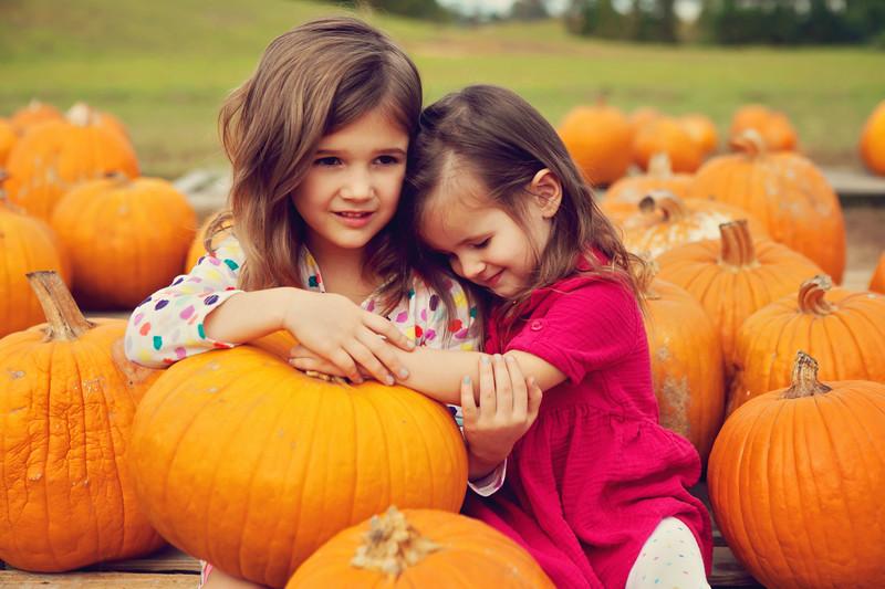 pumpkin patch-26.JPG
