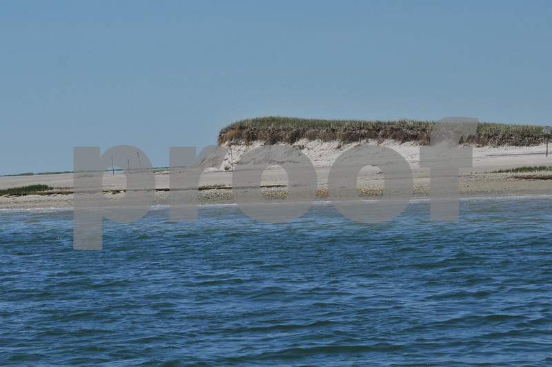 Pictues from cape and father day 069.JPG