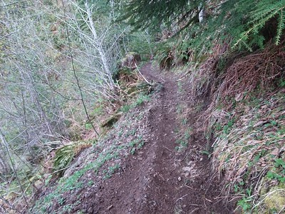 4/22/17 OMRA Trail Crew Work Party