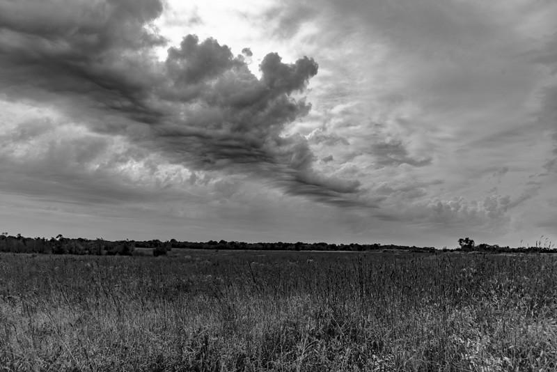 Prairie  50