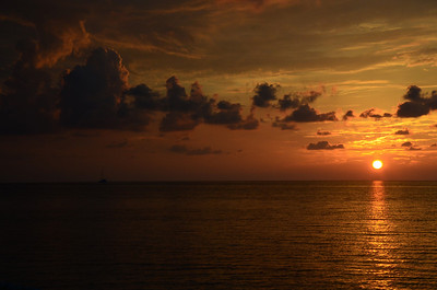 Florida 2012