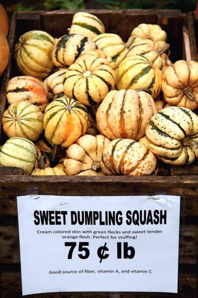 """Sweet Dumpling Squash"",  Union Square GreenMarket, NYC"