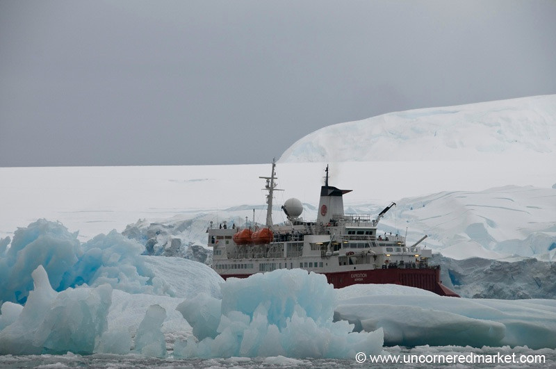 MS Expedition Surrounded by Ice - Antarctica