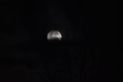 Thanksgiving Moon