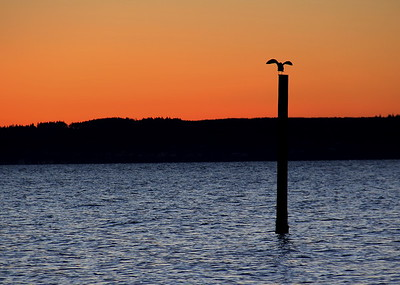 Edmonds Sunset 010211