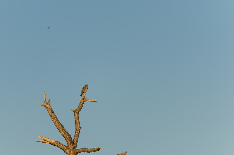 JRF-DUPUIS-RESERVE-003.jpg