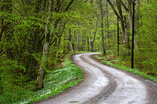 Tromtö Naturreservat 2 maj