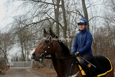 140418 The track and the stable