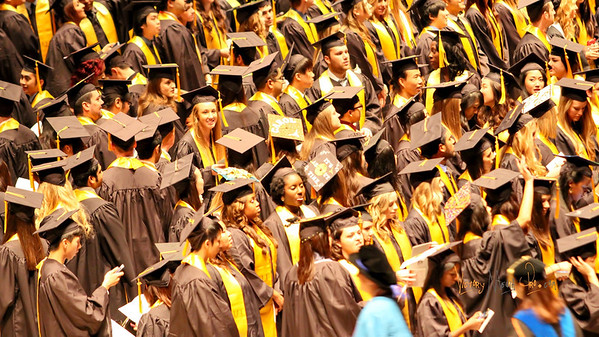 Joy Adeku College Graduation