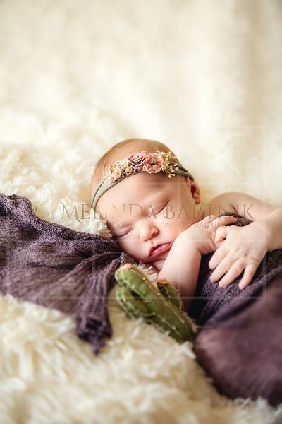 Dakota Newborn