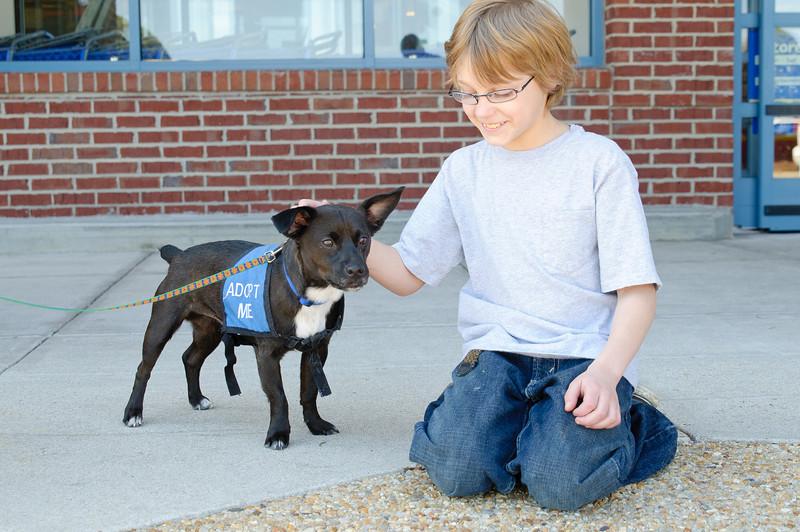 20110312 PetSmart Adoption Event-50.jpg