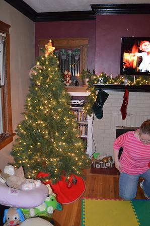 Tree & Christmas Up - Dec. 2012