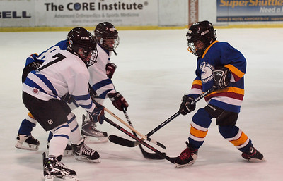 Coyotes Amateur Hockey Association - Squirt Division