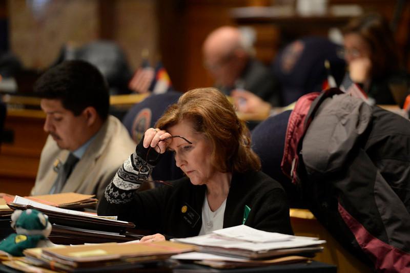 . Senator Linda Newell during debate on HB13-1229 concerning criminal background checks during he 3rd reading in the Denver Senate  at the Denver State Capitol March 11, 2013 Denver, Colorado. (Photo By Joe Amon/The Denver Post)