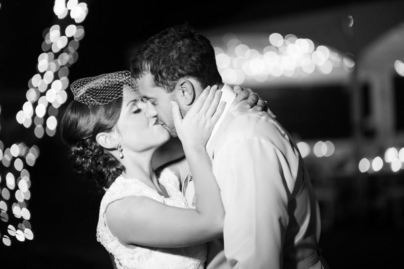 Backyard wedding reception at a home in the Chicago suburbs.  Wedding photographer – Ryan Davis Photography – Rockford, Illinois.