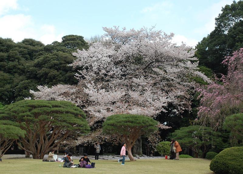 35-Japan07_1449.JPG