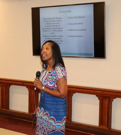 North Fulton Mental Health Collaborative - Lynnette Allen Presentation