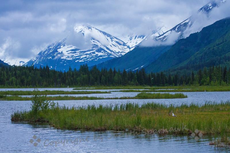 Tern Lake, Alaska - Judith Sparhawk