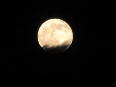 Strawberry Moon 6.20.16