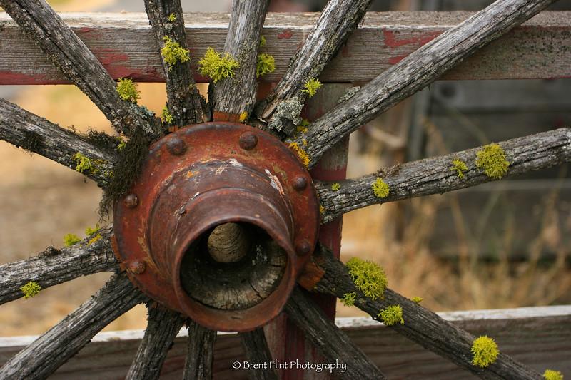 DF.1916 - wagon wheel, Molson Ghost Town Museum, WA.