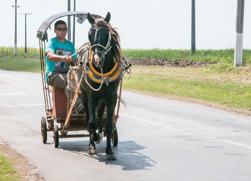 Cuba Carts-8.jpg