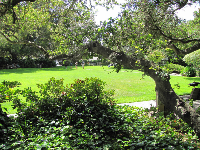 Carmel City Park