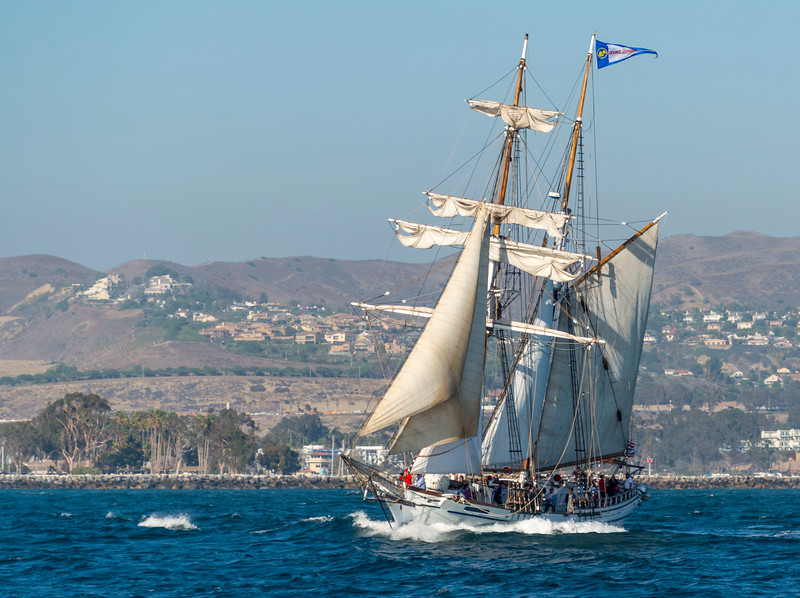 Tall Ships_Irving Johnson-3.jpg