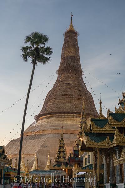 Dawn at the scaffolding covered tower of Shwedagon Pagoda in Yangon, Myanmar