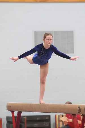 2017 Gymnastics State Championships