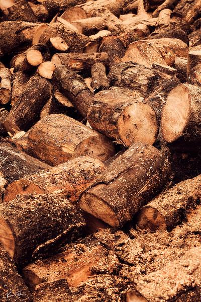 wood chopping 2011