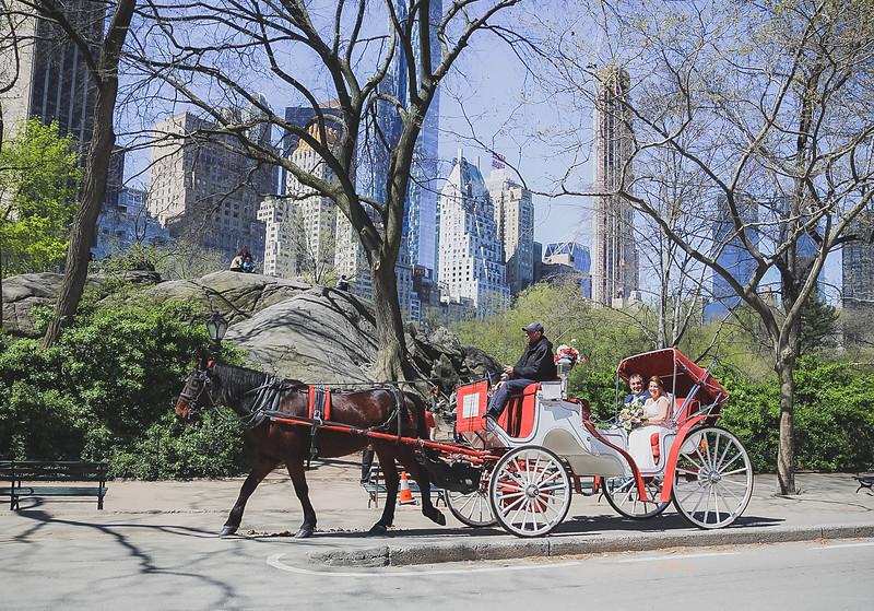 Central Park Elopement - Robert & Deborah-164.jpg