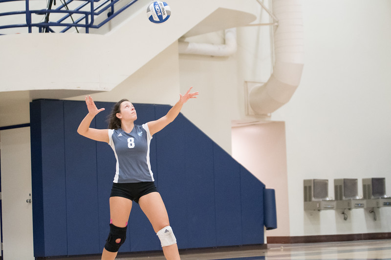 HPU Volleyball-91850.jpg