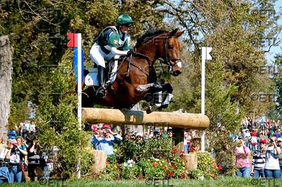 2010 World Equestrian Games
