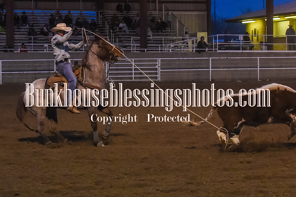 TS TEAM ROPING