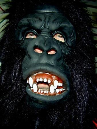 1998 db gorilla.jpg