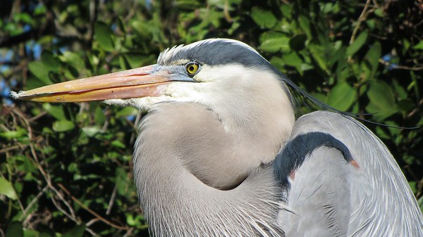 Florida Vacation January 2011