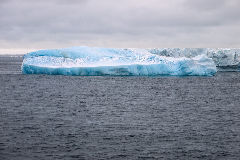 Tabular Ice on side showing roots Antarctica Sound.jpg