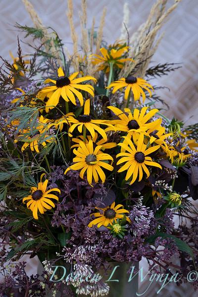 Rudbeckia fulgida var. sullivantii 'Goldsturm' arrangement_2183.jpg