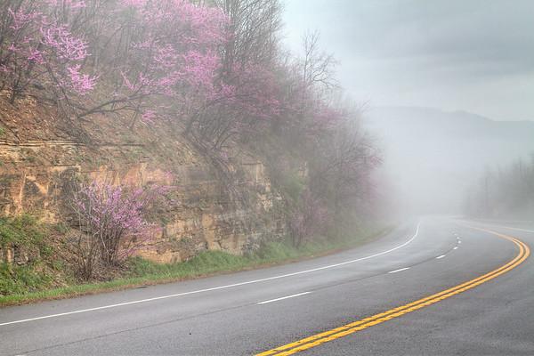 Foggy Martin's Mountain / Cumberland