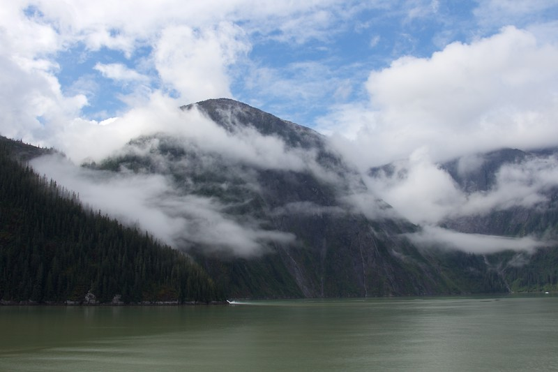 Tracy Arm Fiord 7
