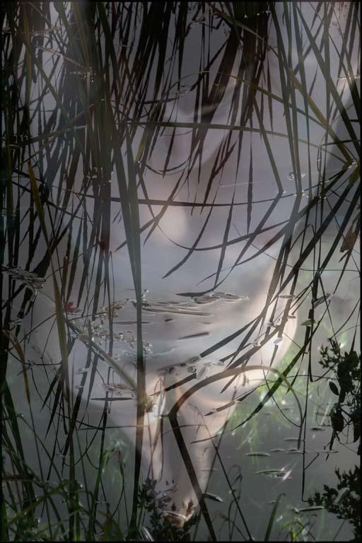 Jan Pieter -  Ghost in Bog - 7