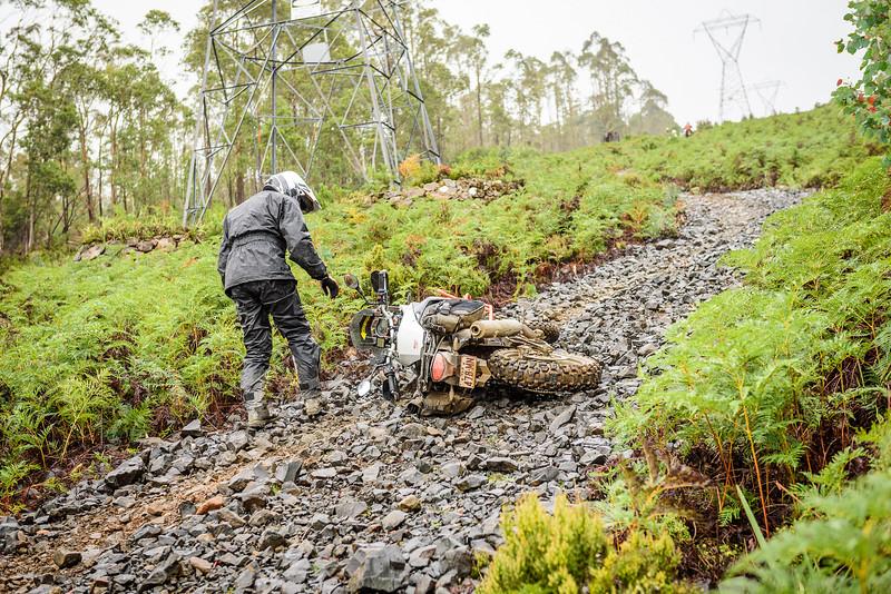2019 KTM Australia Adventure Rallye (442).jpg