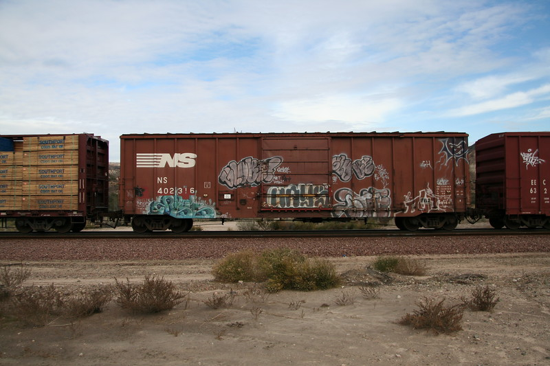 NS402316.JPG