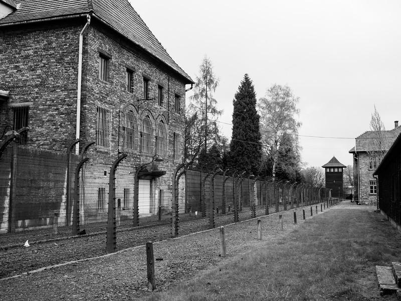 Auschwitz-Birkenau-7.jpg