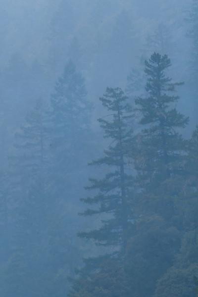 Smoke on the Rogue River