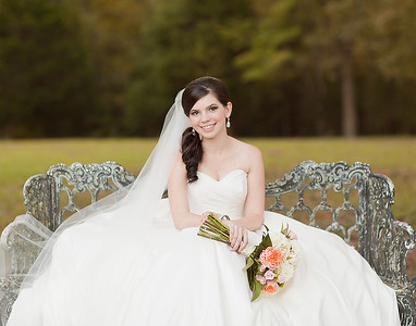 Sarah Boyer's Bridal Portraits