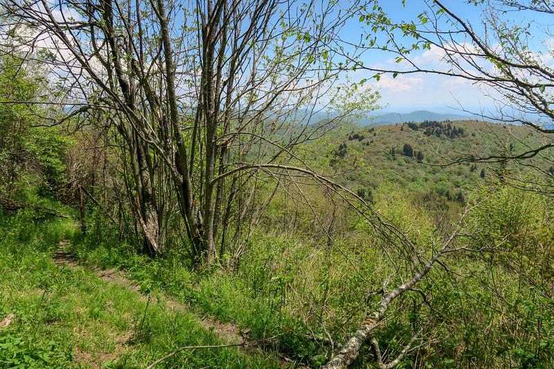 Mountains-to-Sea Trail -- 5,820'