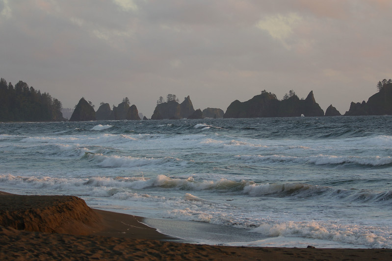 Pacific Ocean at Shi Shi Beach.jpg