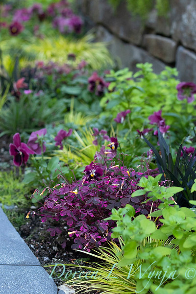 The Chartreuse Garden_1023.jpg