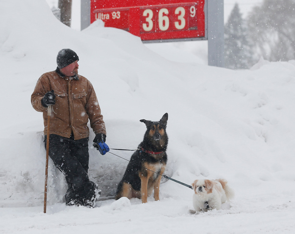 . Tom Kitson of Ayr, Ont., with companions Dug and Champ, waits for a friend outside a convenient store on Thursday, Nov. 20, 2014, in West Seneca, N.Y. A new blast of lake-effect snow pounded Buffalo for a third day piling more misery on a city already buried by an epic, deadly snowfall that could leave some areas with nearly 8 feet of snow on the ground when it\'s all done. (AP Photo/Mike Groll)